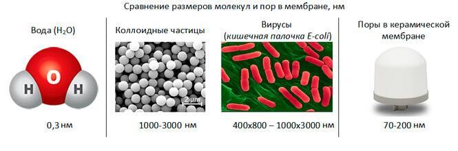 Размер пор керамического фильтра в сравнении с бактериями